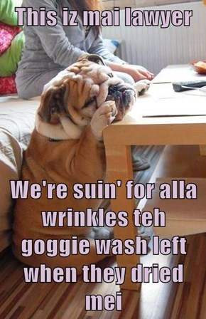 This iz mai lawyer  We're suin' for alla wrinkles teh goggie wash left when they dried mei