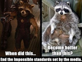 All raccoons are beautiful