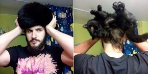 See This Hat? 'Tis My Cat!