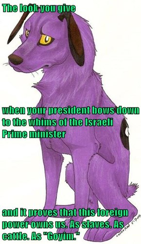 """The look you give when your president bows down to the whims of the Israeli Prime minister and it proves that this foreign power owns us. As slaves. As cattle. As """"Goyim."""""""