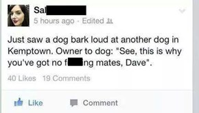 Get it Together, Dave