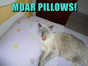 MOAR PILLOWS!