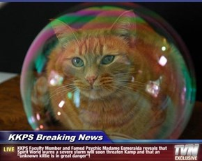 "KKPS Breaking News - KKPS Faculty Member and Famed Psychic Madame Esmeralda reveals that Spirit World warns a severe storm will soon threaten Kamp and that an ""unknown kittie is in great danger""!"