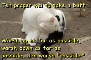 "Teh proper wai tu take a baff..  Warsh up as far as possible, warsh down as far as possible..den warsh ""possible!"""