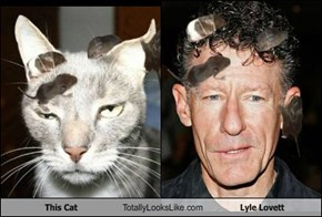 This Cat Totally Looks Like Lyle Lovett