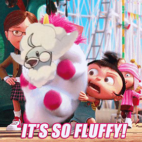 TThere is No Such Thing as Too Fluffy
