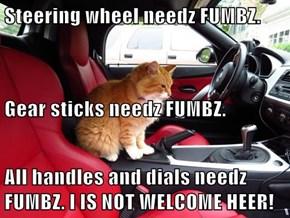 Steering wheel needz FUMBZ. Gear sticks needz FUMBZ. All handles and dials needz FUMBZ. I IS NOT WELCOME HEER!