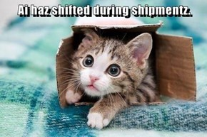 Ai haz shifted during shipmentz.
