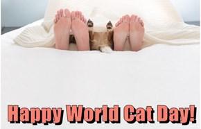 Happy World Cat Day!