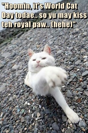 """Hoomin, it's World Cat Day todae.. so yu may kiss teh royal paw.. (hehe)"""