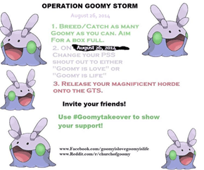 Goomy Storm Number Two!