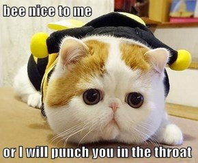 bee nice to me  or I will punch you in the throat