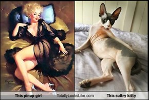 This pinup girl Totally Looks Like This sultry kitty