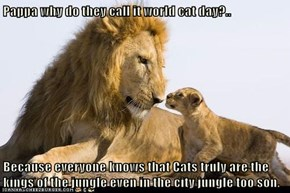 Pappa why do they call it world cat day?..  Because everyone knows that Cats truly are the kings of the jungle even in the city jungle too son.