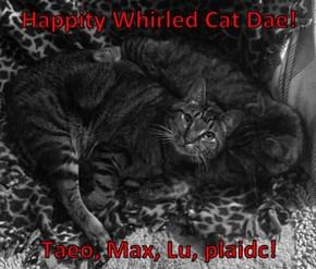 Happity Whirled Cat Dae!   Taeo, Max, Lu, plaidc!