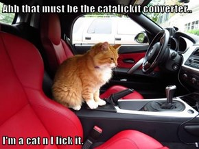 Ahh that must be the catalickit converter..  I'm a cat n I lick it.