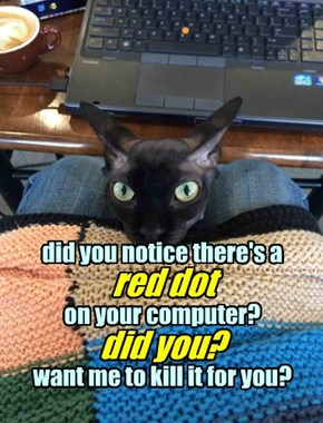 did you notice there's a red dot on your computer? did you? you want me to kill it for you?