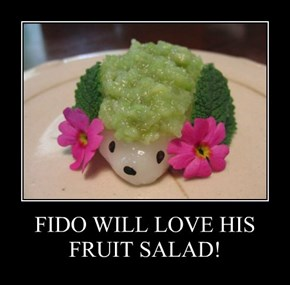FIDO WILL LOVE HIS FRUIT SALAD!