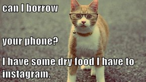can I borrow  your phone? I have some dry food I have to instagram.