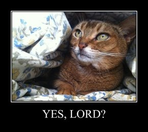 YES, LORD?
