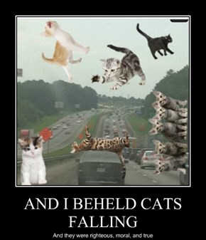 AND I BEHELD CATS FALLING