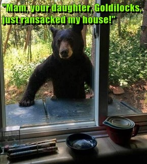 """Mam, your daughter, Goldilocks, just ransacked my house!"""
