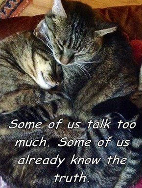 Some of us talk too much. Some of us already know the truth.