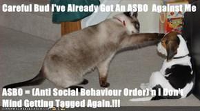 Careful Bud I've Already Got An ASBO  Against Me  ASBO = (Anti Social Behaviour Order) n I Don't Mind Getting Tagged Again.!!!