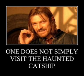 ONE DOES NOT SIMPLY VISIT THE HAUNTED CATSHIP
