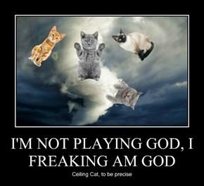 I'M NOT PLAYING GOD, I FREAKING AM GOD