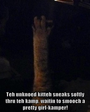 Teh unknoed kitteh sneaks softly thru teh kamp, waitin to smooch a pretty girl-kamper!