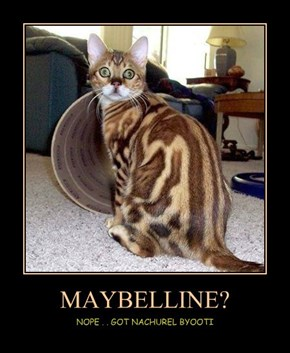 MAYBELLINE?