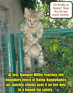 A bery tired an' hungry Millie iz makin' great progress!  But the monster tornado is closing in fast on Kamp Kuppykakes!!