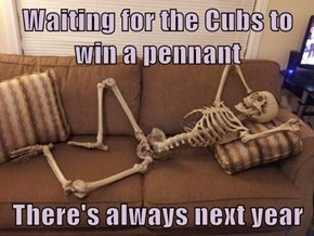 Waiting for the Cubs to win a pennant  There's always next year