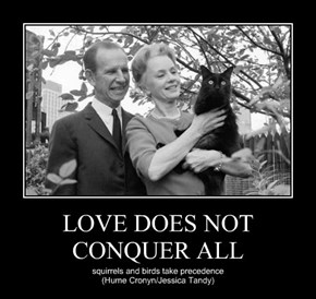 LOVE DOES NOT CONQUER ALL