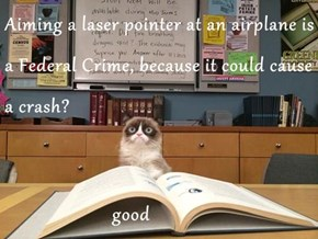 Aiming a laser pointer at an airplane is a Federal Crime, because it could cause a crash?                          good