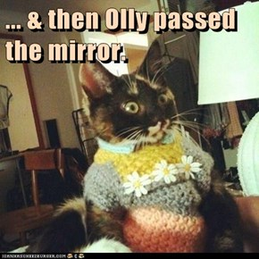 ... & then Olly passed the mirror.
