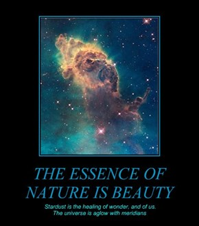 THE ESSENCE OF NATURE IS BEAUTY