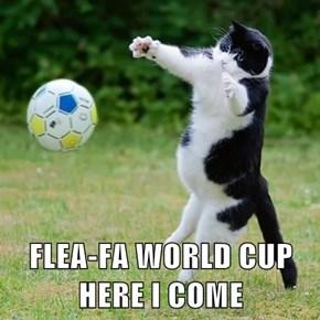 FLEA-FA WORLD CUP HERE I COME