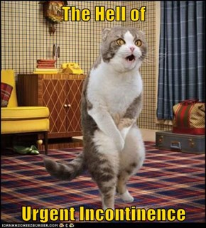 The Hell of   Urgent Incontinence