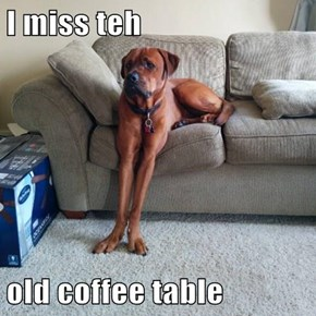 I miss teh  old coffee table