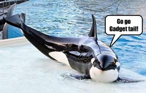Go go Gadget tail!