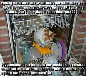Putting the dishes away?  ACTUALLY put them away.  Feel the dishes in your hand.  How do they feel?  Sense the texture.  Don't think about feeling them, just DOO it.    Pay attention to the feeling of the weight being released as you set the dish down.