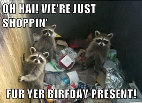 OH HAI! WE'RE JUST SHOPPIN'  FUR YER BIRFDAY PRESENT!