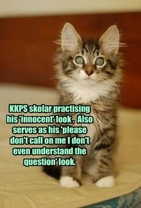 KKPS skolar practising his 'innocent' look .  Also serves as his 'please don't call on me I don't even understand the question' look.