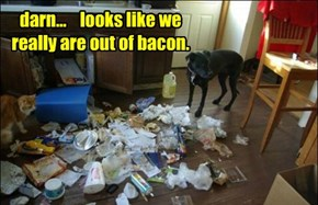 darn...    looks like we really are out of bacon.