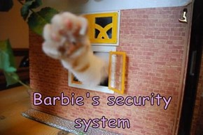 Barbie's security system
