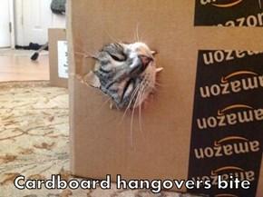 Cardboard hangovers bite