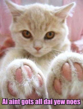 The doralicious jellybean toes of your Master are waiting to be kissed