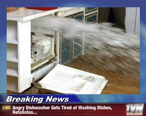 Breaking News - Angry Dishwasher Gets Tired of Washing Dishes, Retaliates...